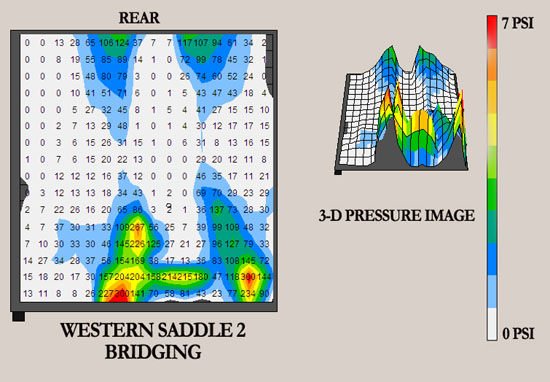 TW Saddles Western Saddle Bridging