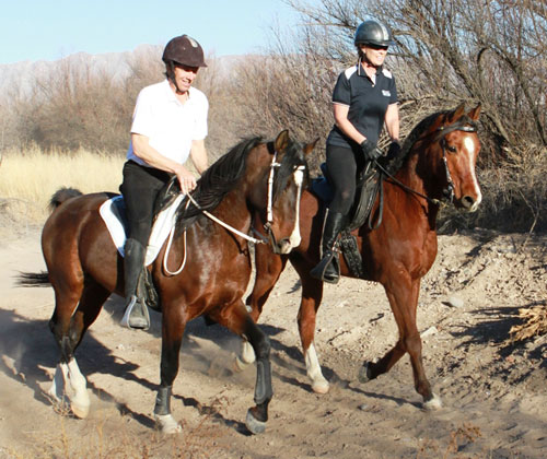 David on Ari, and his wife Tracy ride on their training trails at their New Mexico farm, flightleader.com