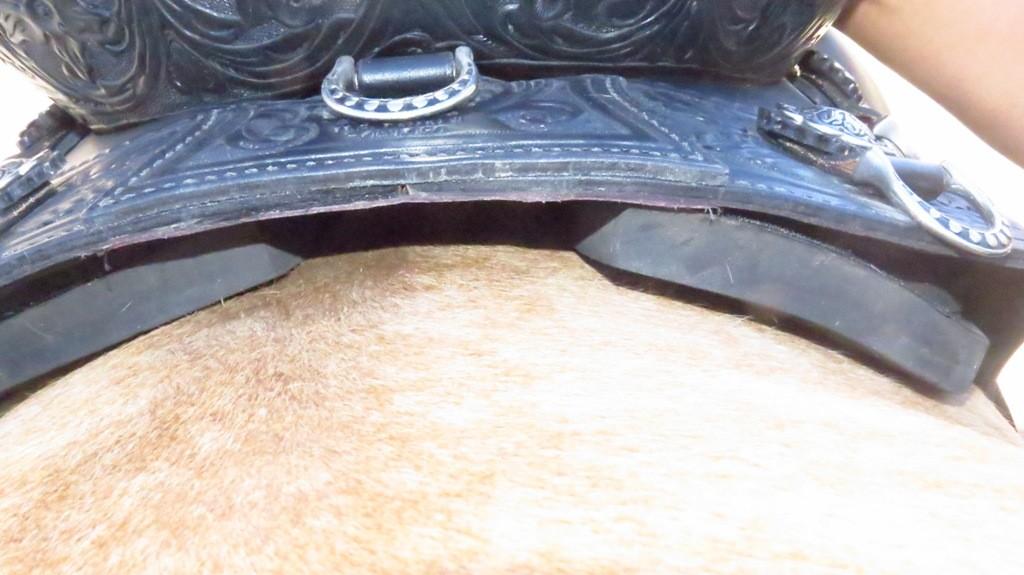 top rear